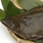 福島産ヒラメが風評被害でヒラメフェア中止